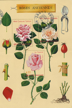 Rose Stamps from France